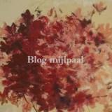 Blog mijlpaal + spam je favoriete blog