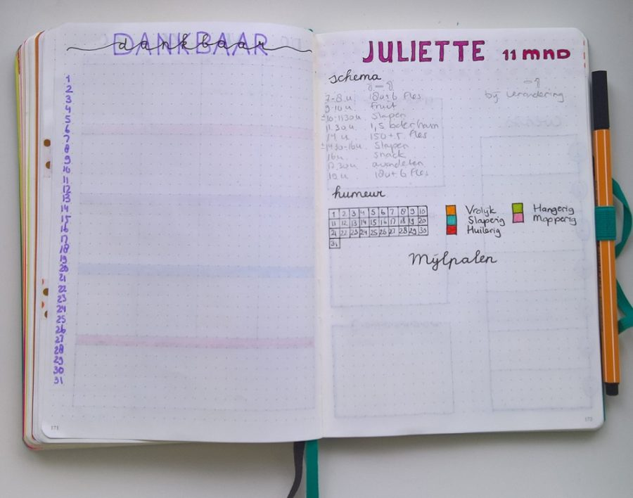 Bullet journal dankbaarheid tracker kind mindjoy