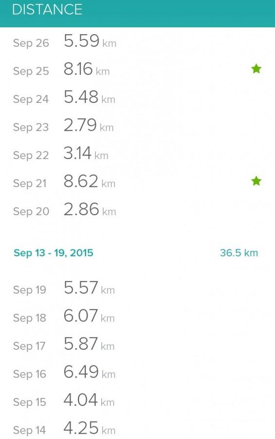 Fitbit flex printscreen kilometers per dag