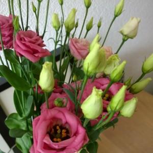 Gekregen bloemen collegas