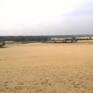 Genieten Loonse en Drunense duinen