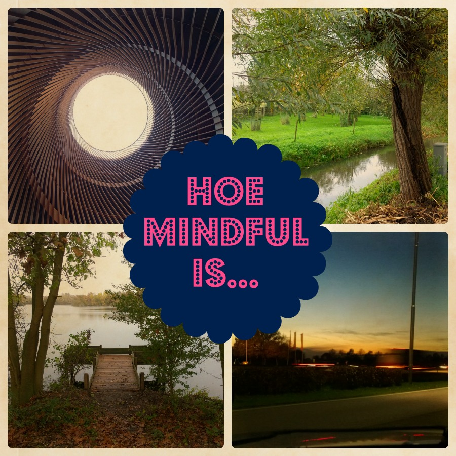 Hoe mindful is logo mindjoy