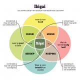 Het ontdekken van je Ikigai