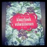 Creatief zijn met het kleurboek voor volwassenen