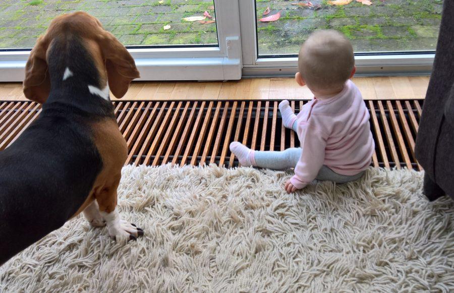 Louie Juliette 9 maanden samen buiten kijken