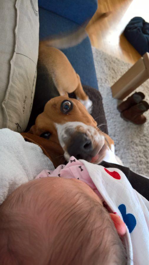 Louie mindjoy lief voor baby