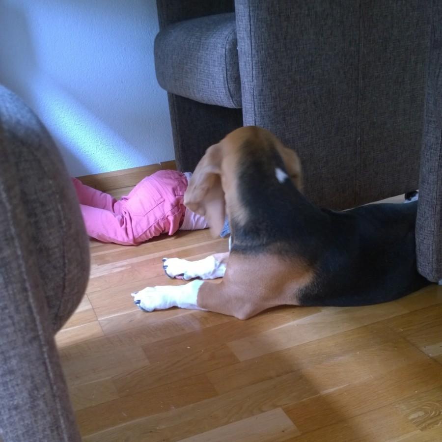 Louie samen met Fay spelen