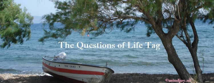 The questions of life tag logo