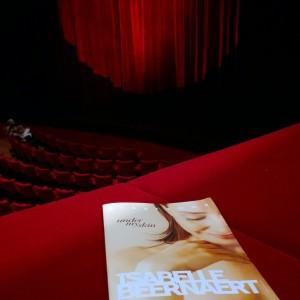Voorstelling Isabelle Beernaert under my skin