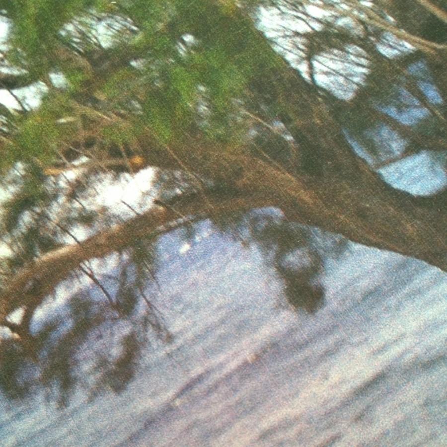 Webrpint foto hout dichtbij