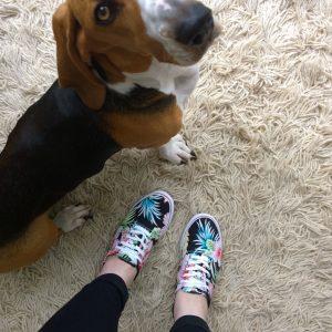 zomerse fila schoenen louie mindjoy